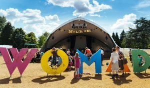 WOMAD festival image